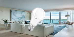 Led-Lamps-smd-a60-10